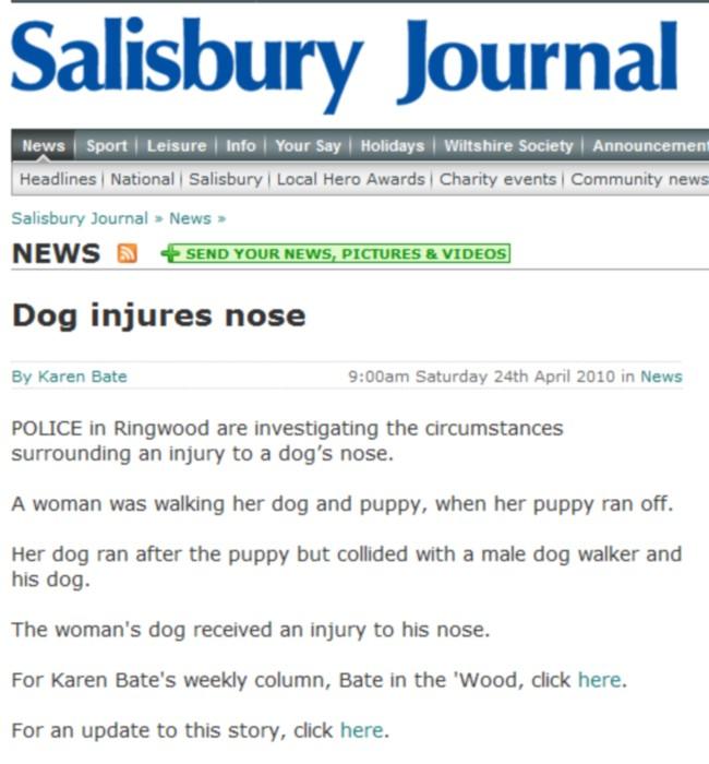 Dog-injures-nose