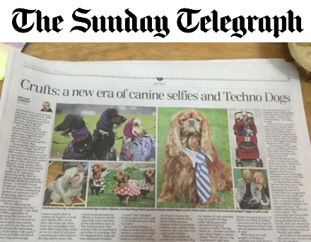 Sunday Telegraph Pet Selfie Mirror